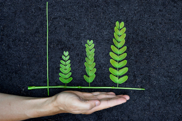 Sustainable Business Practices