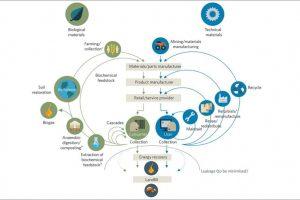 Circular Economy Concept Eu (1)